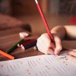 educação escola aluno conselho